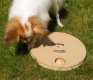 Dog Spinny - Nina Ottosson thumbnail